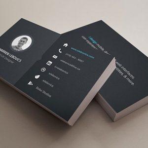 Warren-Lebovics-Business-Cards-l