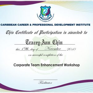 ccpdi_official_certificate_by_kycon-d333v9e